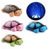 Tortuga Veladora Musical  con Luces Interactivas - Marron al mejor precio solo en loi